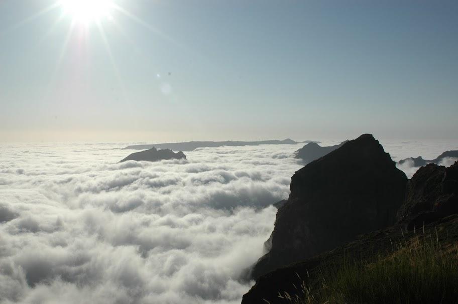 Entre a Montanha e o Mar - Página 2 DSC_8723
