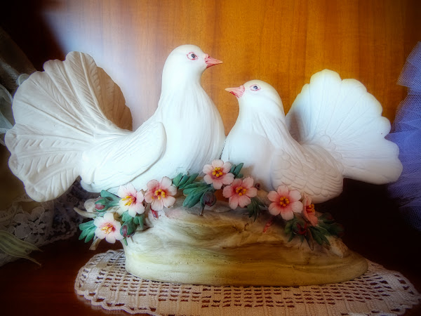 Faithful Doves