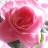 CindyKay Clark avatar image