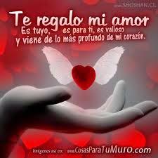 Amor Amor Images