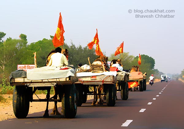 Camel carts in India on Jaipur-Bikaner road in Rajasthan