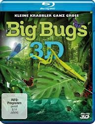 Big Bug 3D - Thế giới côn trùng