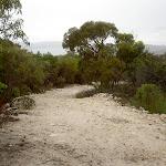 Headland Service Trail (28052)