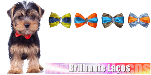 Gravata-Borboleta para Cães