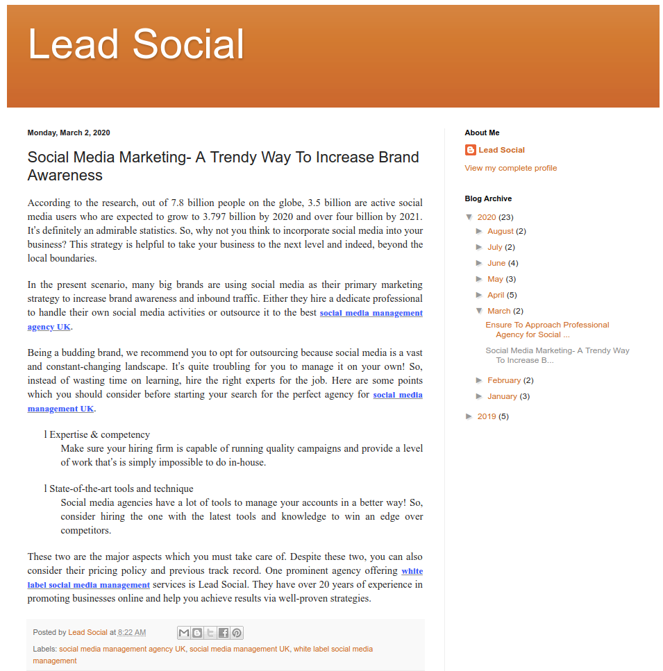 Blog Submission Lead Social - Freelance Digital Marketers