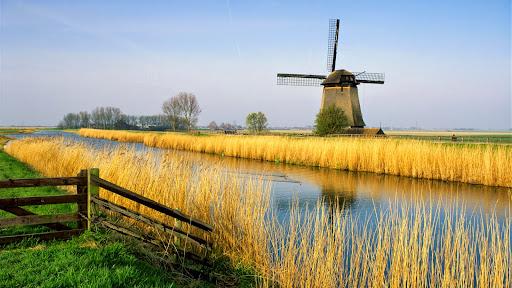 Schermerhorn, Holland.jpg