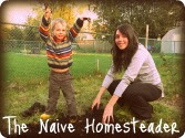 The Naive Homesteader