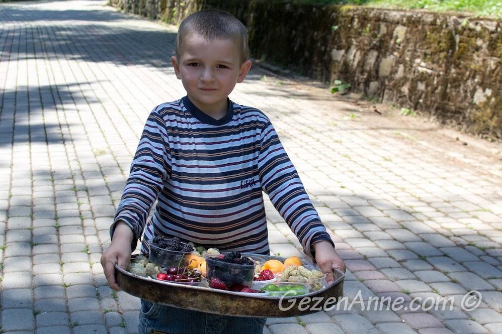 Şirin meyva satıcısı, Yalova Termal
