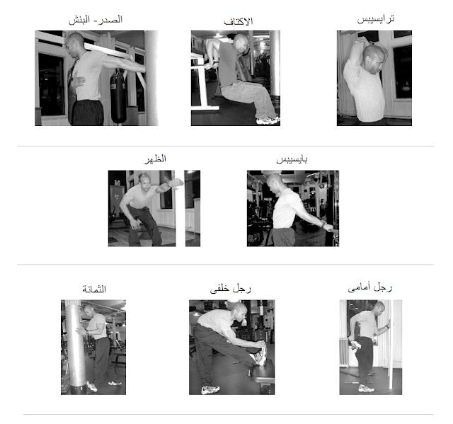 شرح تمارين الاطالة بالصور