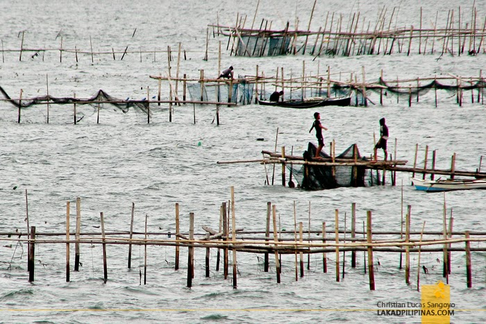 Bamboo Fishing Bridgeways at Ozamis City