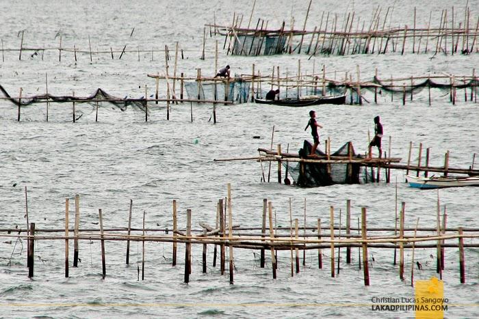 Bamboo Fishing Bridgeways at Ozamis City
