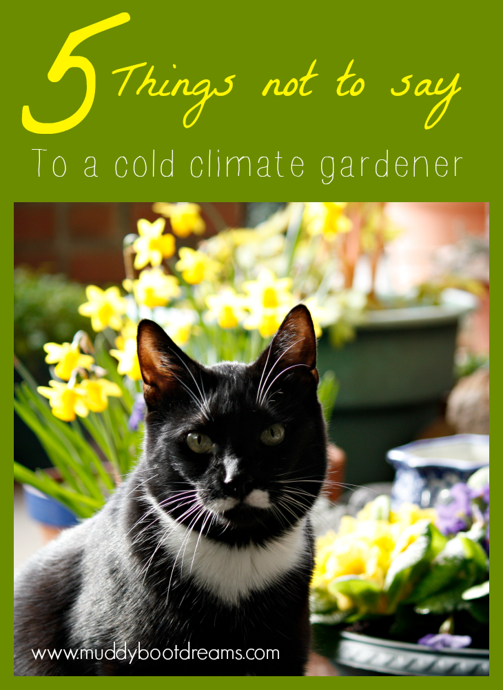 5 things not to say to a gardener in a cold climate