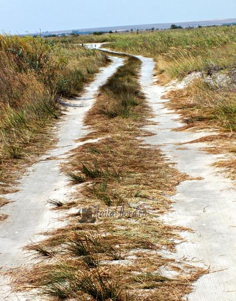 drumul spre plaja vadu