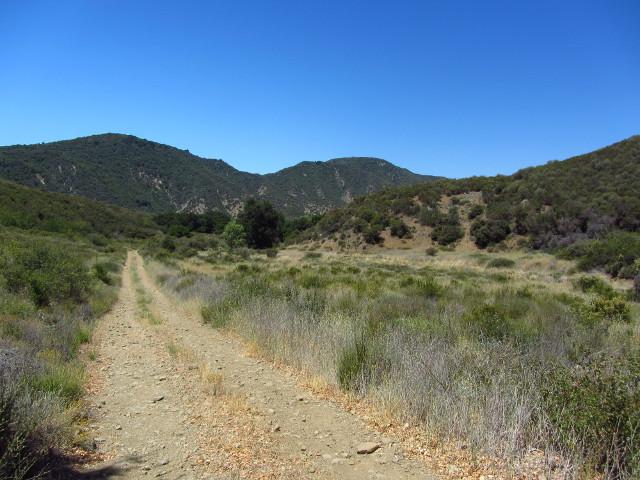 road into Little Caliente, as far as it goes