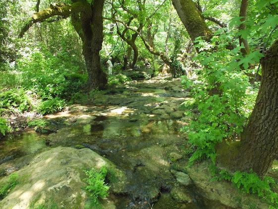 Fotoğraf Orhaniye-Selimiye