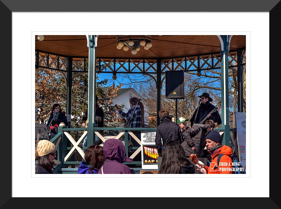 枫叶糖浆节在加拿大滑铁卢城举办  (纪实片)