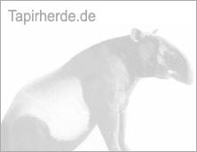 Tapirherde Logo for Facebook etc.
