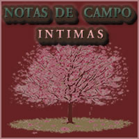 Notas de campo Intimas
