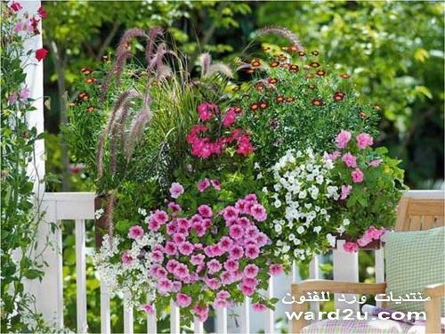 a%2520%25289%2529 بعض الافكار والاذواق والانظمة لتنسيق الحدائق والشرفات والمنازل بالورود