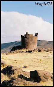 Un mois aux pays des Incas, lamas et condors (Pérou-Bolivie) - Page 3 Wap-Sillustani