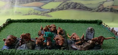Skaven Converted Rat Swarms