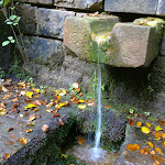 Wasserversorgung im Pfälzerwald problemlos. Brunnen, Quellen und Bäche überall.