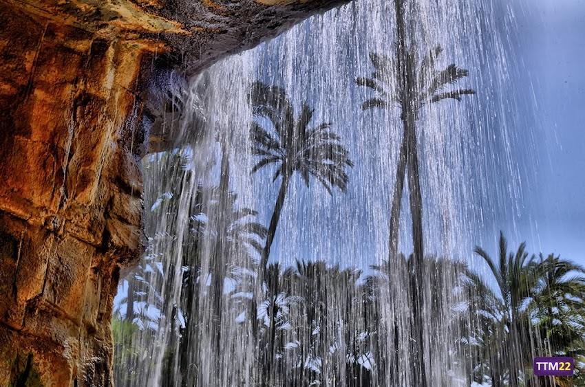18-55 mm, Alicante, HDR, Nikon D5100, Palmeras, Parque El Palmeral, Parques, Árboles, Cascada, Paisajes,