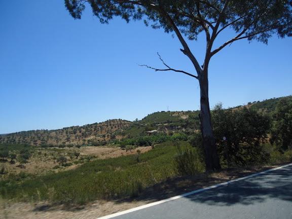 Long Way to....Faro 2011   - Página 3 DSC02640