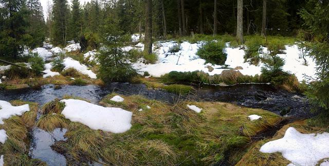 Der Weg vom Brocken Richtung Oderteich. Durch die Schneeschmelze z.T. überschwemmter Weg.