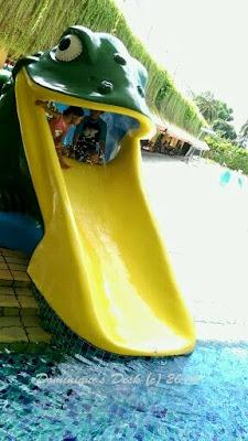 The frog slide