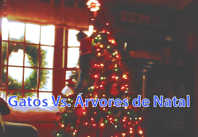 Gatos vs. Árvores de Natal