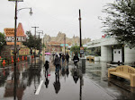 Cars Land in the rain, and RSR was closed