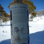 Snow gum sanctuary sign (300046)