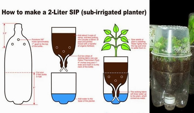 How to Make a Sub-Irrigated Planter (SIP) from a 2-Liter Bottle - Recycling Of Plastic Bottles: How To Make A Sub-Irrigated Planter