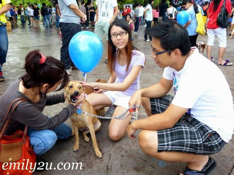 ISPCA World Animal Day