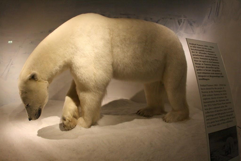 Mal wieder stoße ich auf Eisbären...