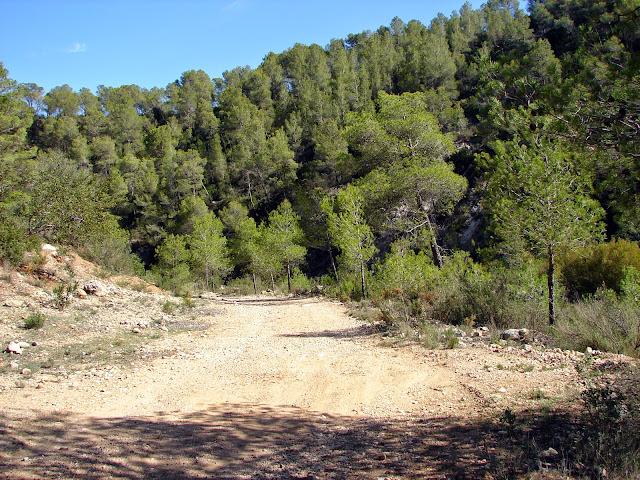 Senderismo - Cueva de la Araña - Gola de Lucino