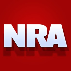 NRA, 2nd Amendment, politics
