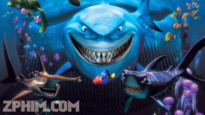 Ảnh trong phim Đi Tìm Nemo - Finding Nemo 1