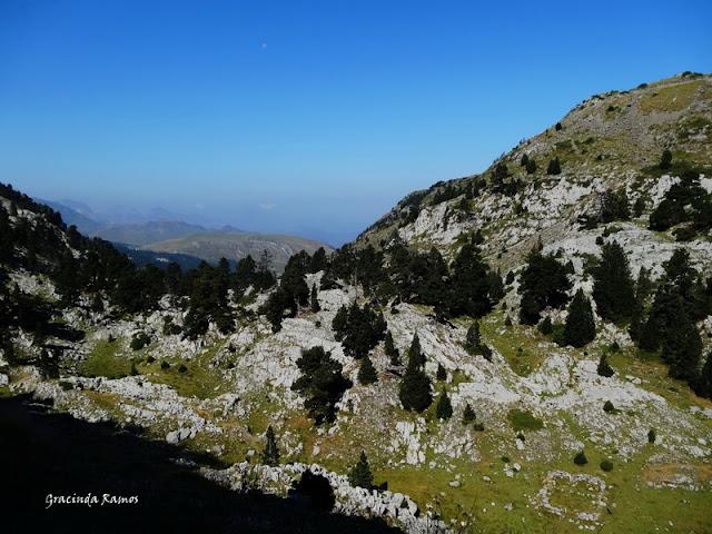 passeando - Passeando pela Suíça - 2012 - Página 27 DSC03493