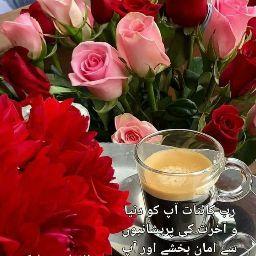 Hafiz Shafiq Ur rehman khan