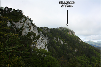 Cordal de Bachicabo