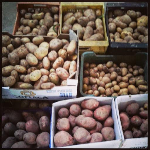 Patatas-ecologicas