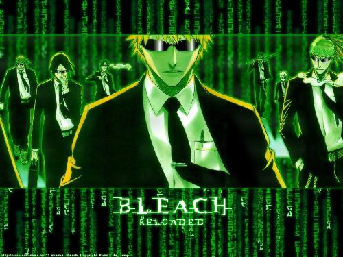 Bleach Matrix