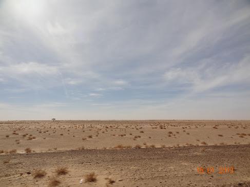 marrocos - Marrocos e Mauritãnia a Queimar Pneu e Gasolina - Página 6 DSC06030