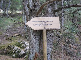 Μονοπάτι Αρκάδων ποιμένων περιοχή Κρανιά Βαλτεσινίκου