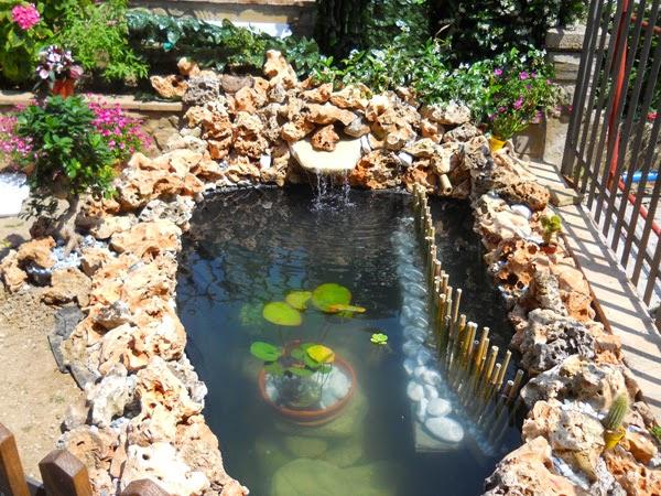 Pond di incuboxxx for Filtro per laghetto ad energia solare