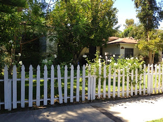 Charming white picket fence lined with climbing roses