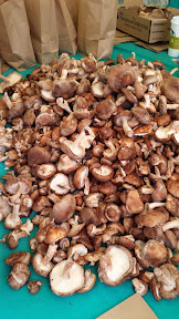 Some of the offerings at the Portland Farmers market on Saturdays at PSU - mushrooms