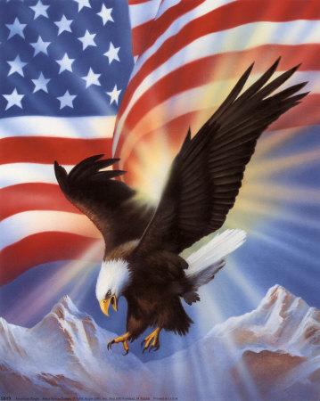 https://lh6.googleusercontent.com/-dwcgW66hodY/SHj9XxmKa-I/AAAAAAAABW8/7anqA5vycZM/5819%25257EAmerican-Eagle-and-Flag-II-Posters.jpg